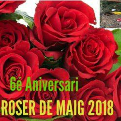 LOGO ROSER JUANJO 2018